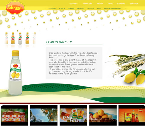 Shezan web site design